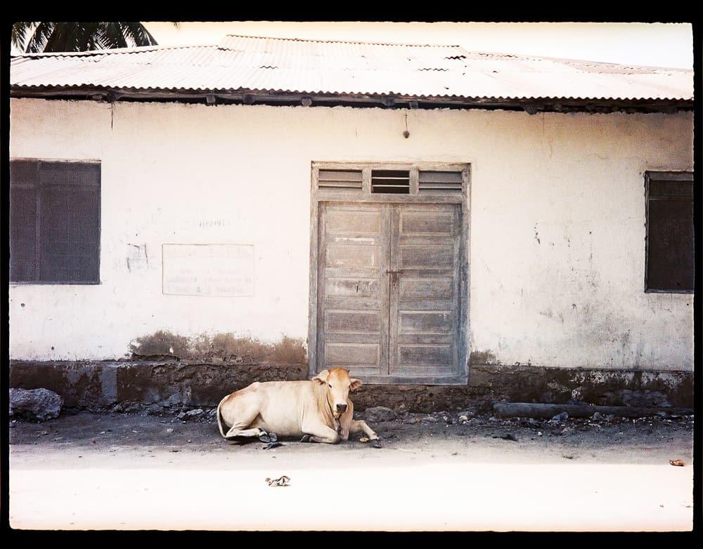 tanzania-travel-photography-BLOG-20