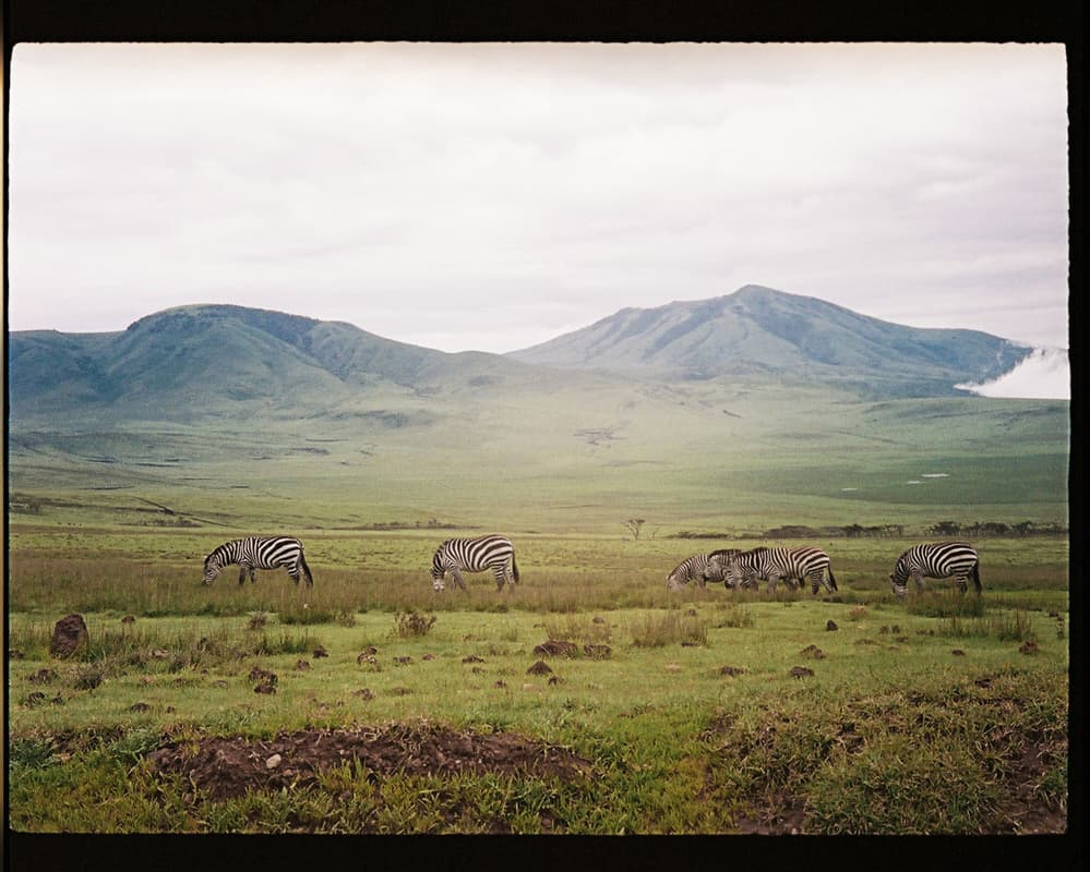 tanzania-travel-photography-BLOG-34